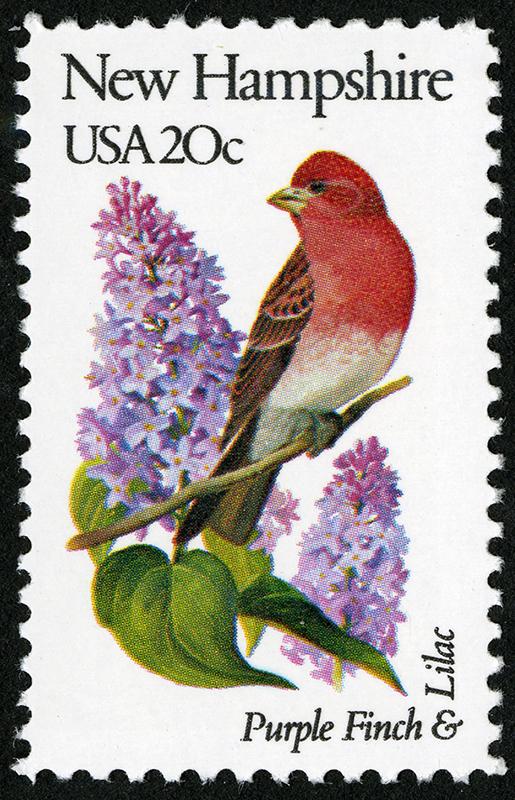 Sello Pinzón morado y Lilo. Serie de sellos Pájaros y flores del estado, correspondiente a New Hampshire (1982).