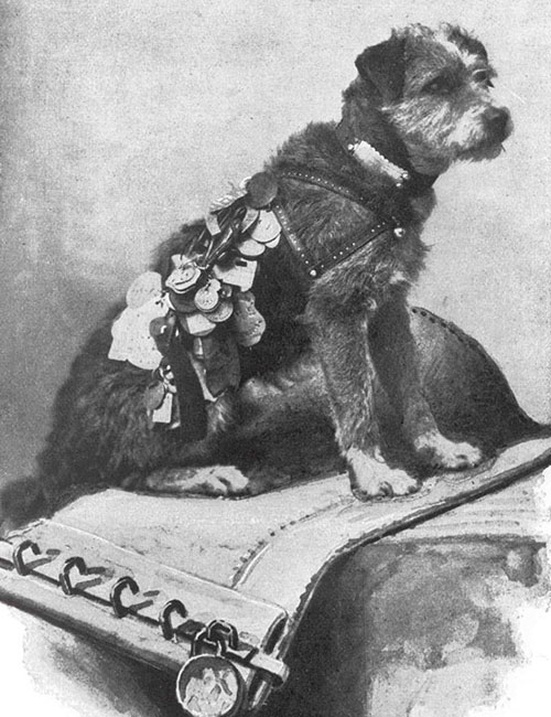 1890s illustration of Owney sitting on a mailbag