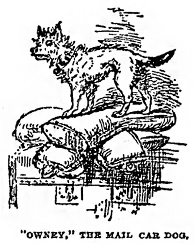 A drawing of Owney the dog standing on a pile of mailbags