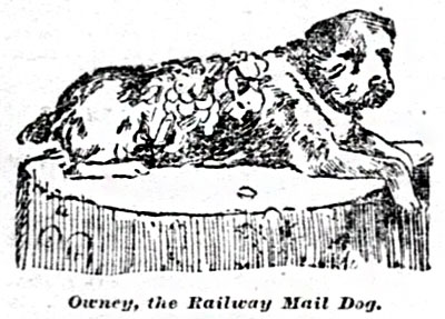 A drawing of Owney the dog laying on a rug
