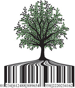 Sketch of a tree with bar code as roots