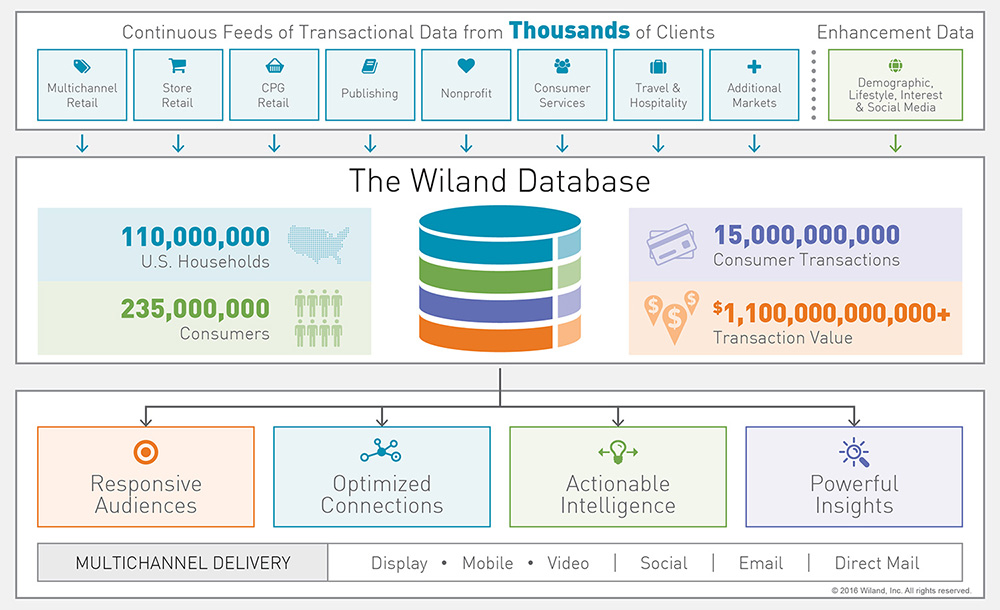 Diagram of the process of the Wiland Group Database