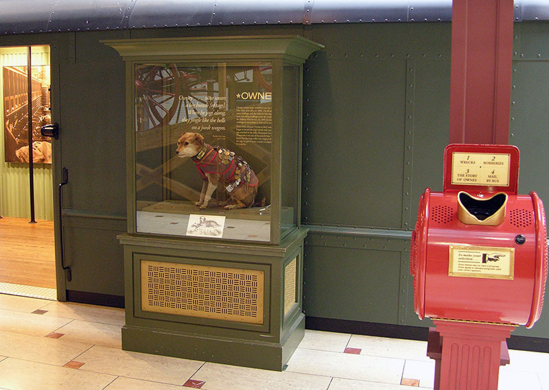 owney on display